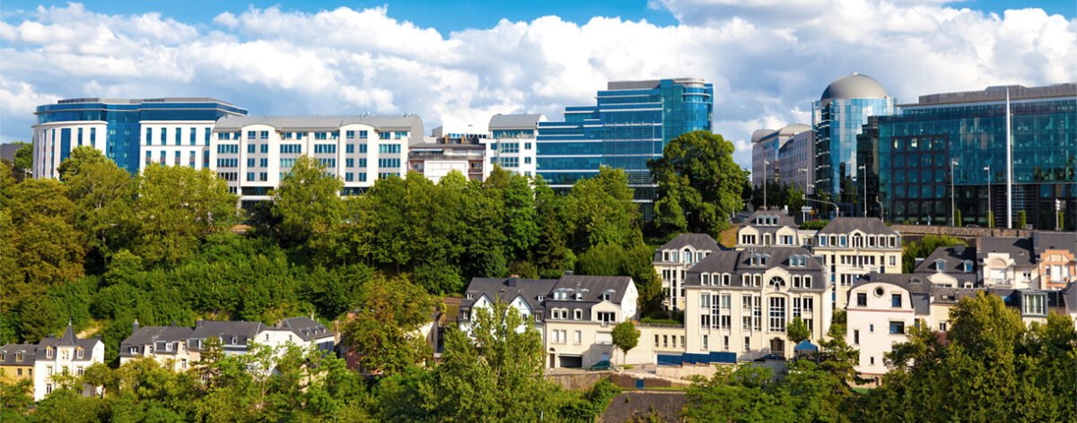 Contact day: the Luxembourg market
