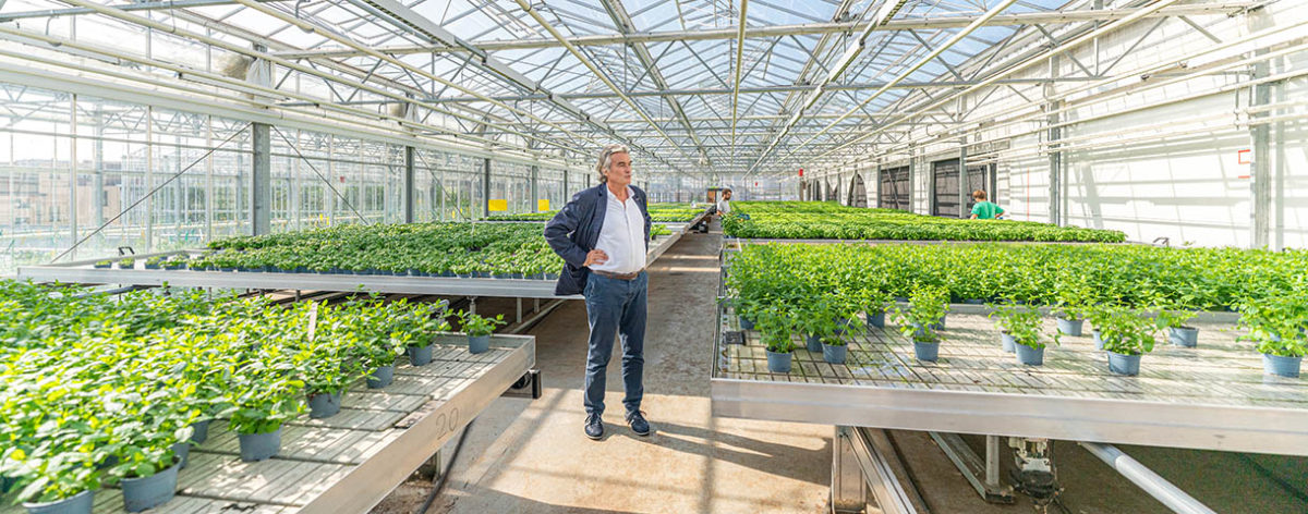 BIGH: Brussels' aquaponics is conquering Europe