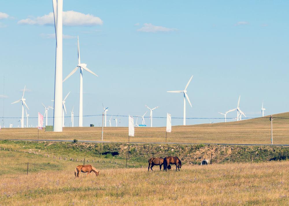 Handelsmissie naar Mongolië
